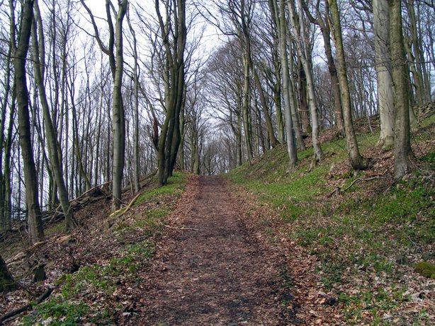 Weg zum Oechsenberg